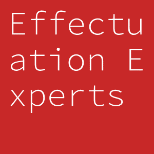 Effectuation Experts
